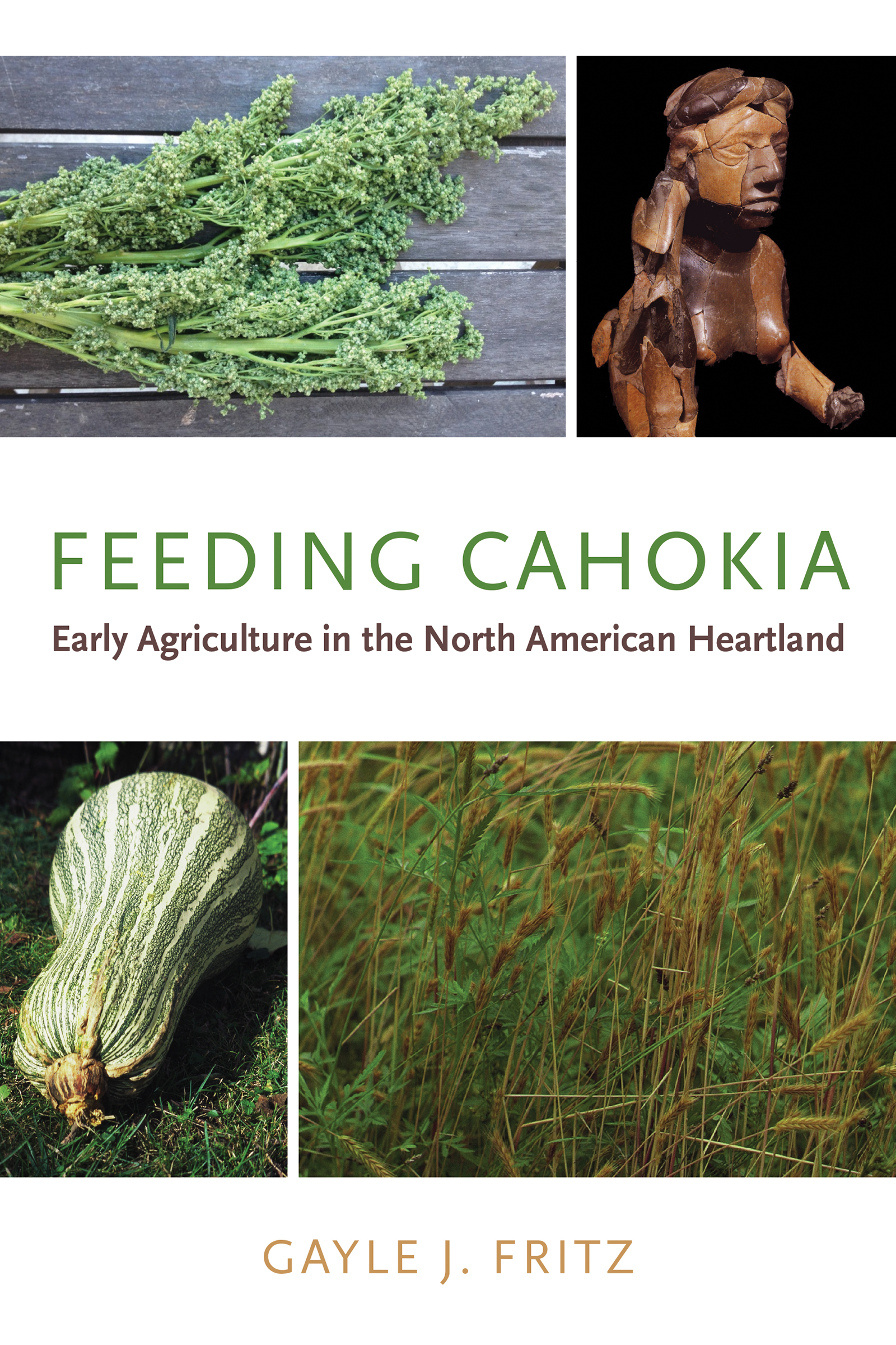 Feeding Cahokia: Early Agriculture in the North American Heartland