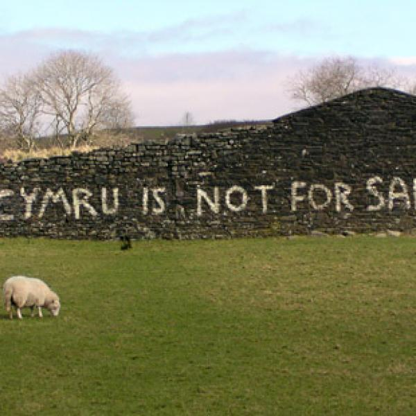 Language revitalization in Wales