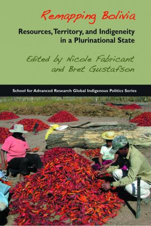 Remapping Bolivia: Resources, Territory, and Indigeneity in a Plurinational State